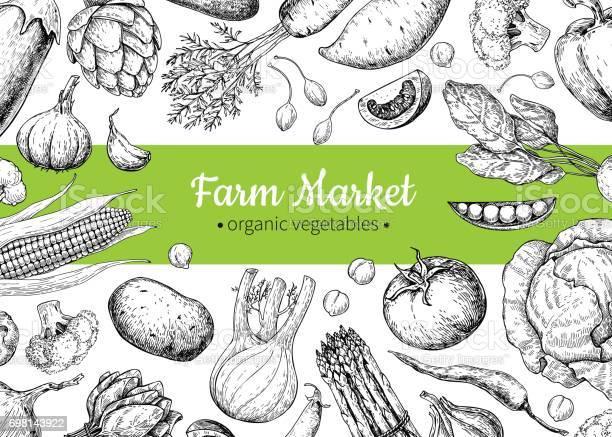 Vegetable hand drawn vintage vector illustration farm market poster vector id698143922?b=1&k=6&m=698143922&s=612x612&h=kue hyahltxvy zjsmscip9mbys yu aq6fbq cqre4=