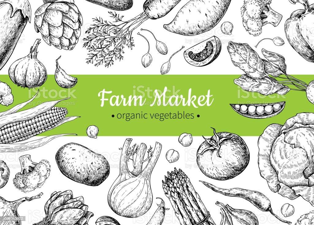 Vegetable hand drawn vintage vector illustration. Farm Market poster. vector art illustration