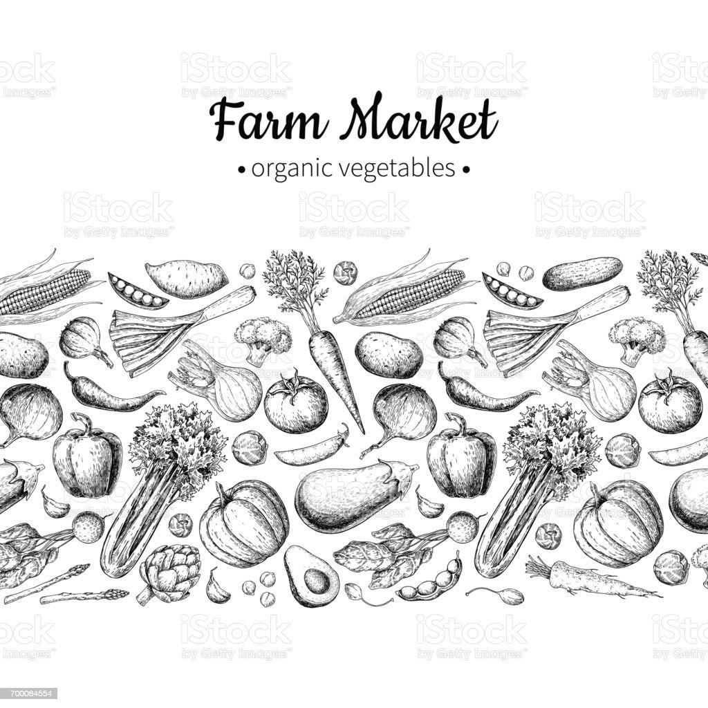 Ilustración de dibujado a mano verduras vector vintage. Cartel del mercado de granja. - ilustración de arte vectorial