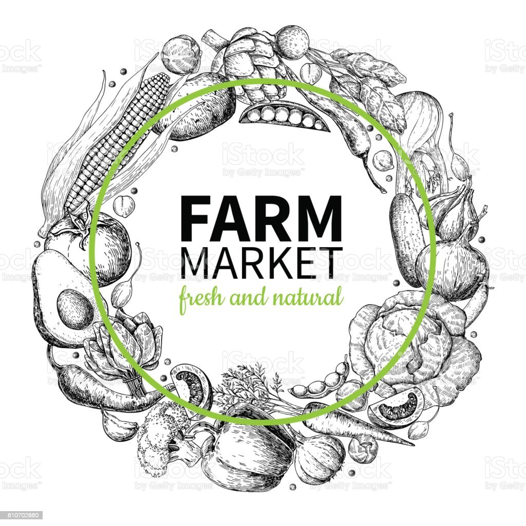 Vegetable hand drawn vintage wreath vector illustration. Farm Market poster vector art illustration