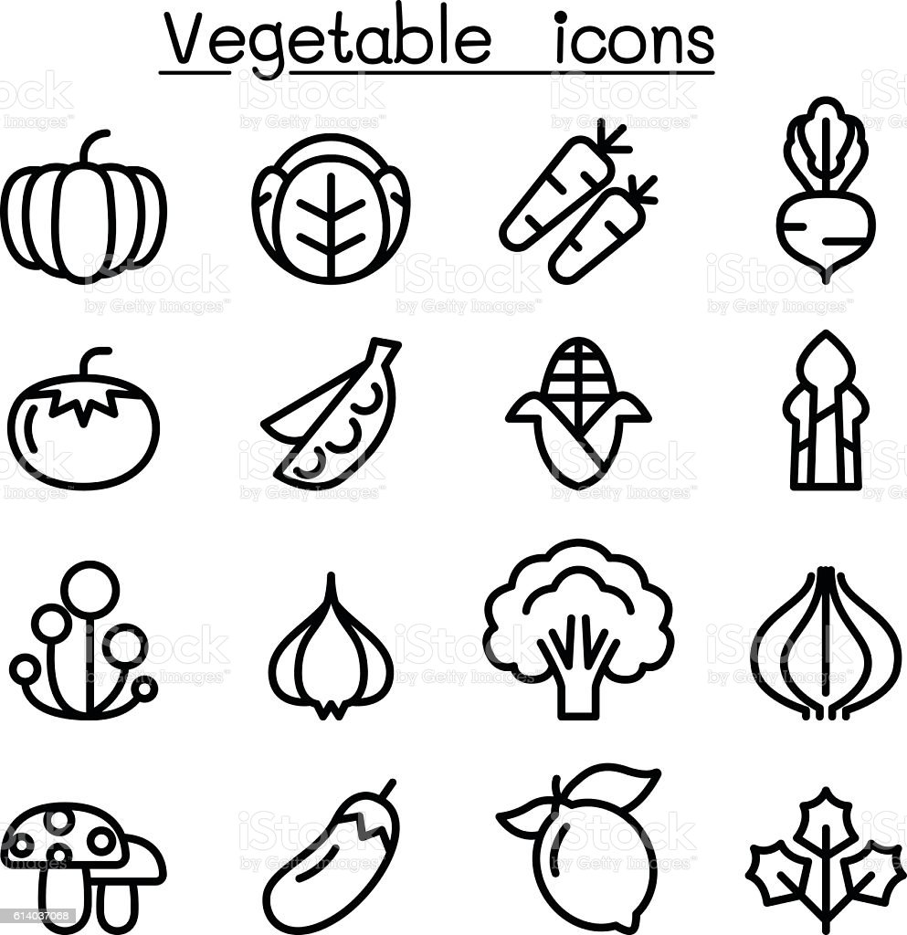 Vegetable icon set in thin line style vector art illustration