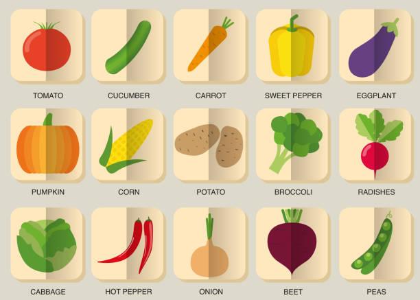 gemüs'icon-set.   bild von gemüse-symbol - sauerkraut stock-grafiken, -clipart, -cartoons und -symbole