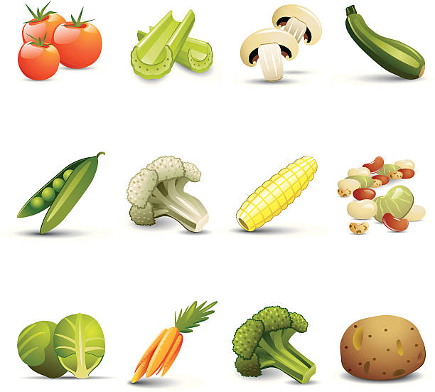 stockillustraties, clipart, cartoons en iconen met vegetable icons - spruitjes