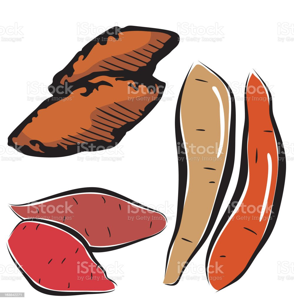 Vegetable Illustrations X: Yams (Vector) royalty-free vegetable illustrations x yams stock vector art & more images of bulgaria