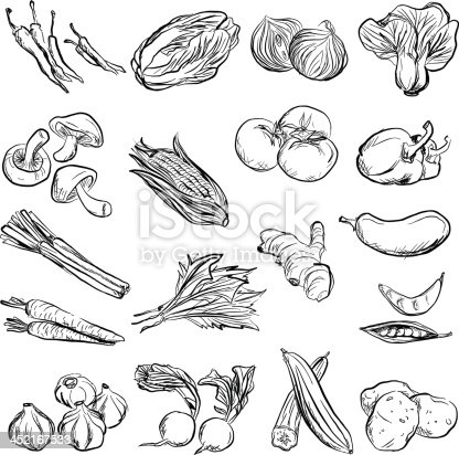 istock Vegetable in charcoal sketch style 452167533