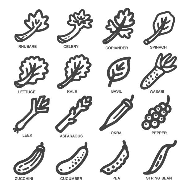 野菜ライン アイコン - わさび点のイラスト素材/クリップアート素材/マンガ素材/アイコン素材
