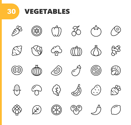 30 Vegetable Outline Icons. Carrot, Lemon, Pepper, Tomato, Cucumber, Potato, Cabbage, Salad, Broccoli, Pumpkin, Onion, Ginger, Zucchini, Mushrooms, Corn, Beans, Peas, Parsley, Arugula, Hot Pepper, Spinach, Radish, Lettuce.