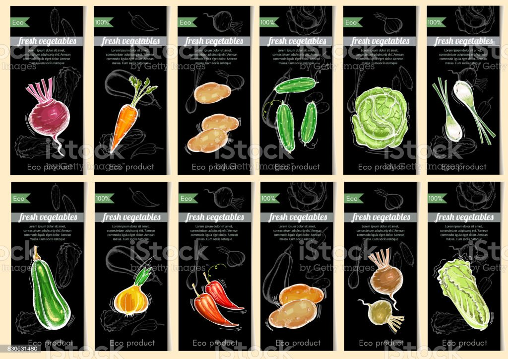 Vegetable seeds packets template. Natural vegetables seeds in packets hand drawn vector. Eco vintage foods. Sketch vegetable banners set vector art illustration