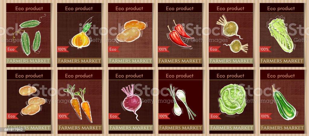 Vegetable seeds packets template. Sketch vegetable banners set. Eco vintage foods. Natural vegetables seeds in packets hand drawn vector vector art illustration