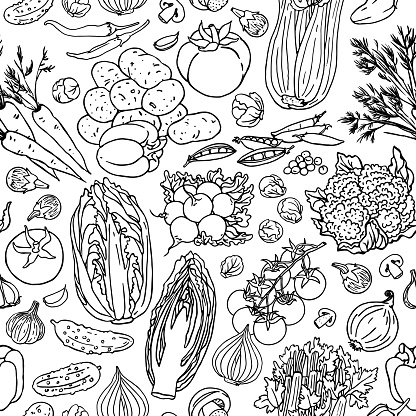 Vegetable sketchy seamless pattern. Colorful background with cabbadge, carots, potatios, tomatous, peas, pepper
