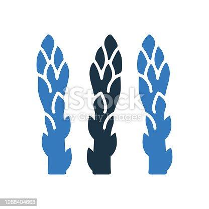 istock Vegetable, sparrow grass icon design 1268404663
