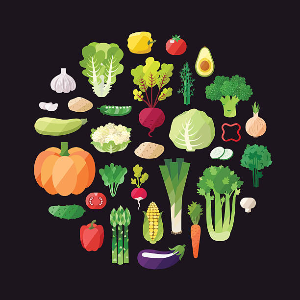 Raw diet stock illustrations