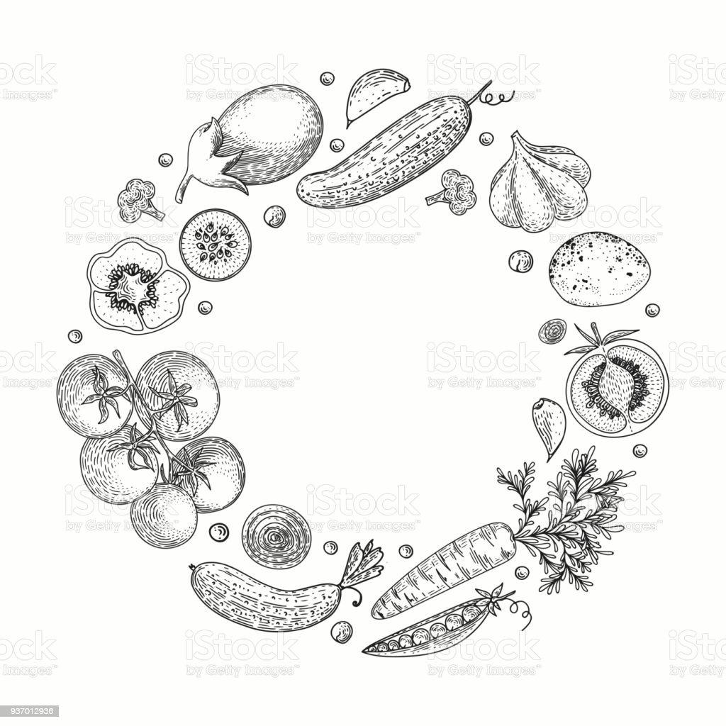 Vegetable Vector Circle With Cucumber Tomato Pepper Eggplant Potato ...