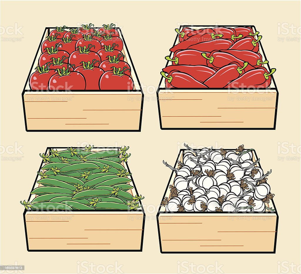 Vegetable royalty-free vegetable stock vector art & more images of drawing - activity