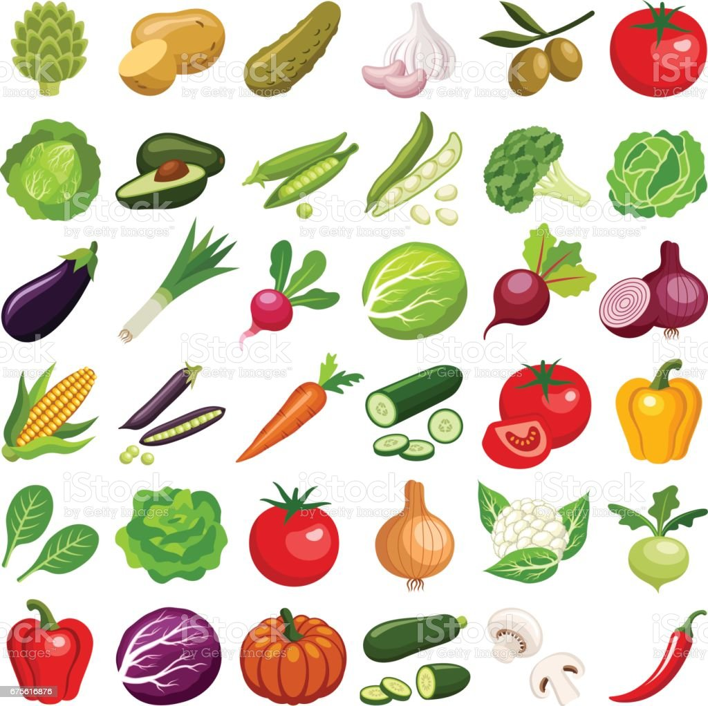 Vegetable vector art illustration