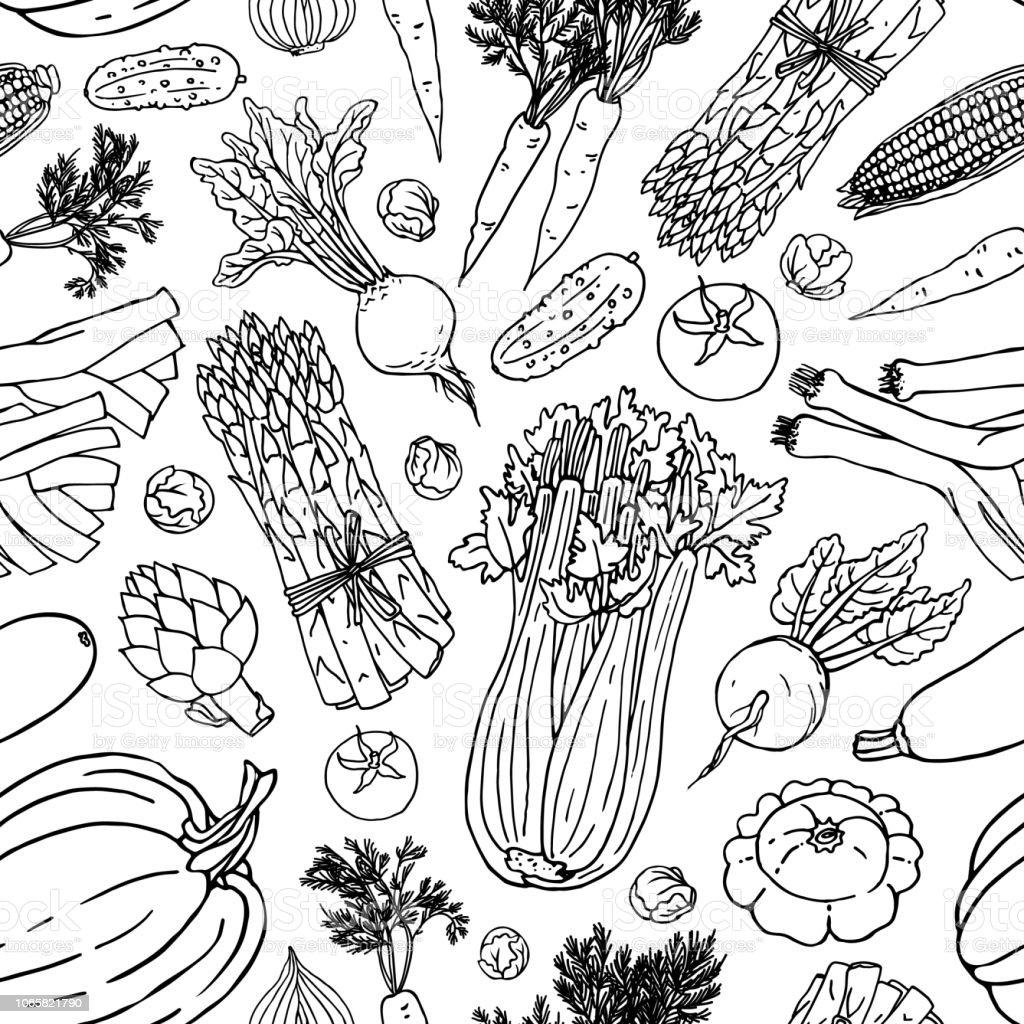 Modèle Sans Couture Vecteur Végétale Noir Et Blanc Vecteurs