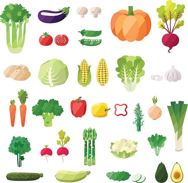 Vegetable vector set. Modern flat design. Vegetable vector set. Modern flat design. Isolated objects. Vegetable icons. asparagus stock illustrations