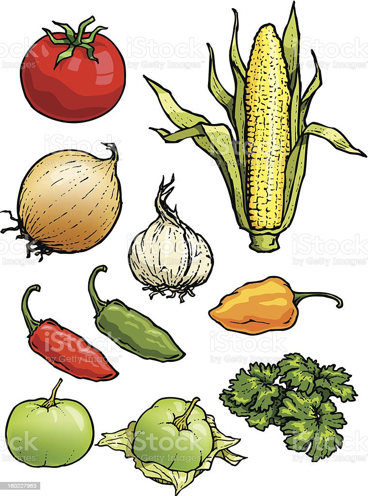 Vegetables 02 royalty-free stock vector art