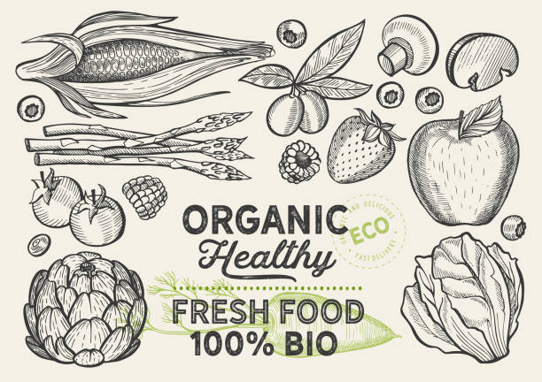 vegetables and fruits illustration for farm market on background. vector hand drawn organic and vegetarian food. design poster with lettering and doodle vintage graphic. - food delivery stock illustrations