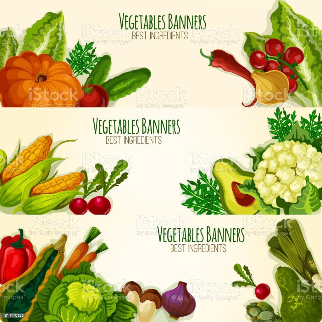 Vegetables and organic veggies vector banners set vector art illustration