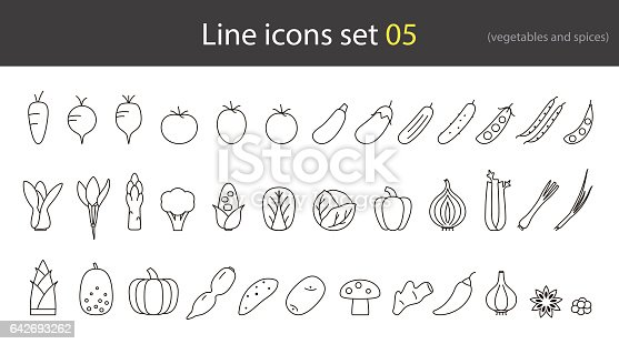 vegetables and spices line icon,vector