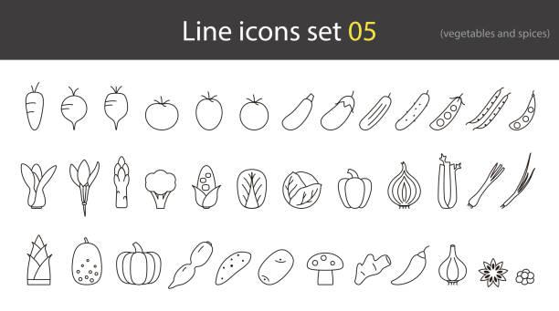 ícone de linha de legumes e especiarias, vector - ilustração de arte em vetor