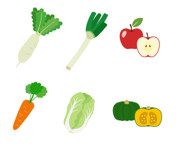 Vegetables at autumn and winter and fruit Vegetables at autumn and winter and fruit squash vegetable stock illustrations