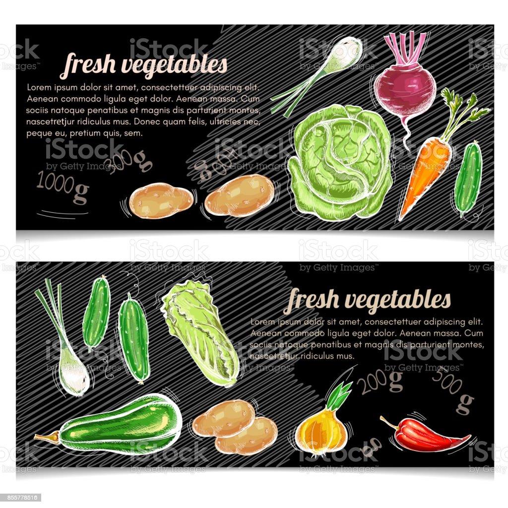 Vegetables banner. Eco farmer vegetables, potato, carrot, cabbage, pepper. Healthy nutrition concept. Fresh vegetarian healthy food of vector chalk sketch vector art illustration