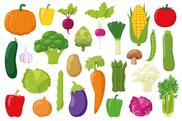 Vegetables Collection: Set of 26 different vegetables in cartoon style Vector illustration Vegetables Collection: Set of 26 different vegetables in cartoon style Vector illustration garlic stock illustrations