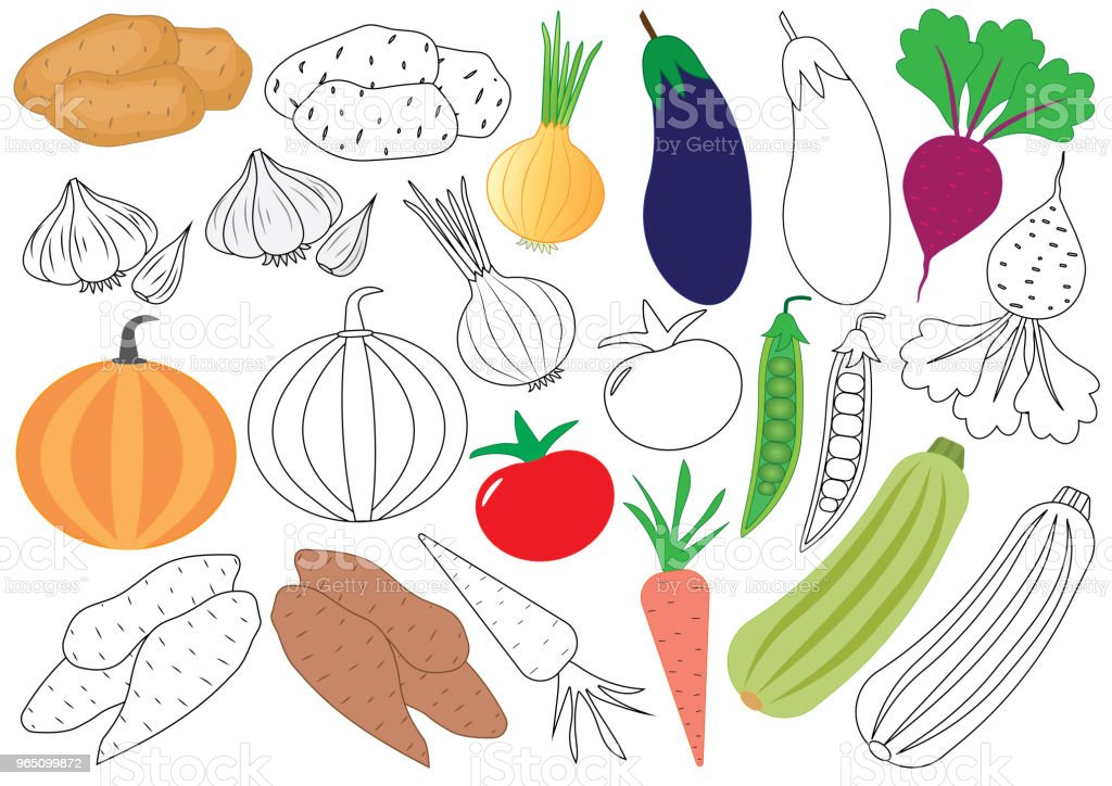 Vegetables. Coloring book. Educational game for children. Vector illustration. royalty-free vegetables coloring book educational game for children vector illustration stock vector art & more images of beet