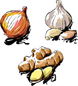 istock Vegetables Drawing 951836518