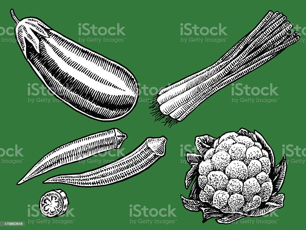 Vegetables - eggplant, okra, green onions, cauliflower vector art illustration