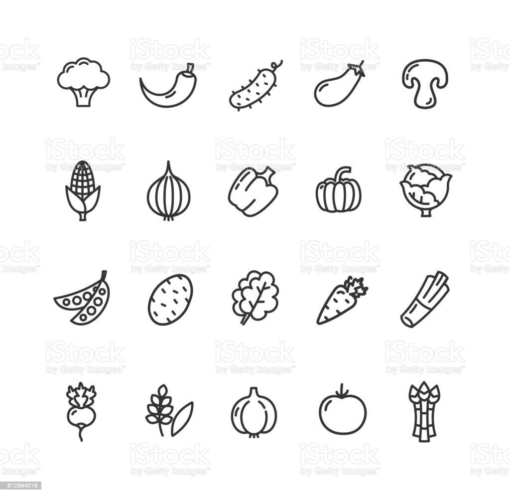 Vegetables Food Black Thin Line Icon Set. Vector vector art illustration