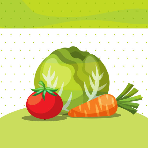 gemüse frische organische gesunden salat karotte tomate - karotte peace stock-grafiken, -clipart, -cartoons und -symbole