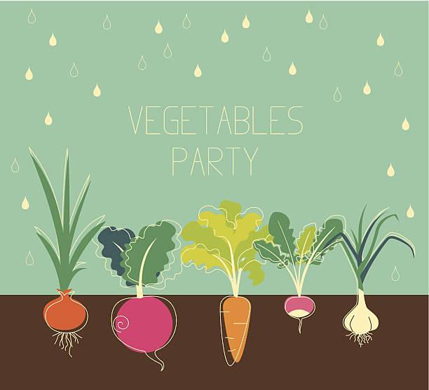 ilustrações, clipart, desenhos animados e ícones de legumes de jardim - horta