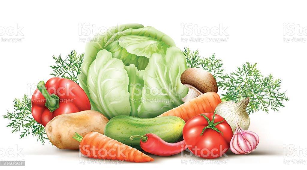 Vegetables group vector art illustration