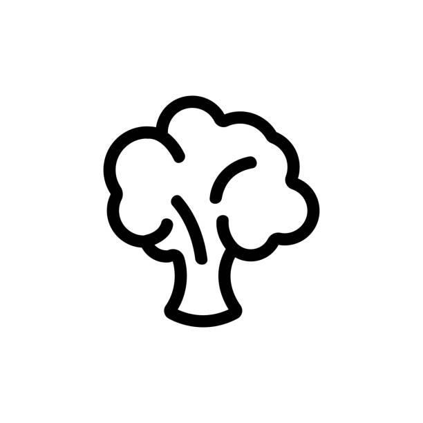 stockillustraties, clipart, cartoons en iconen met groenten pictogram vector. geïsoleerde illustratie van het contoursymbool - kruisbloemenfamilie