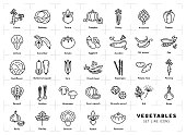 istock Vegetables icons isolated, Spices . Trendy thin line art style 871757418