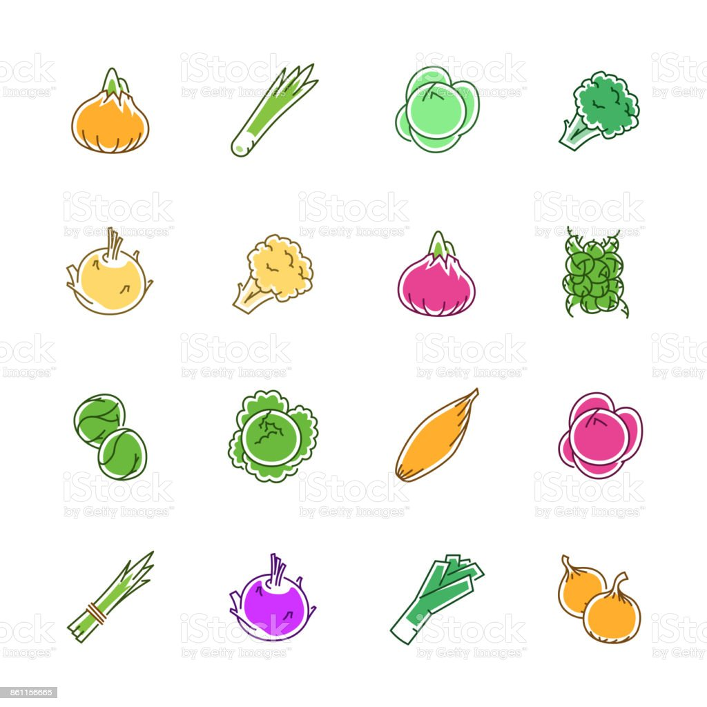Vegetables icons - Onion, cabbage and cauliflower vector art illustration