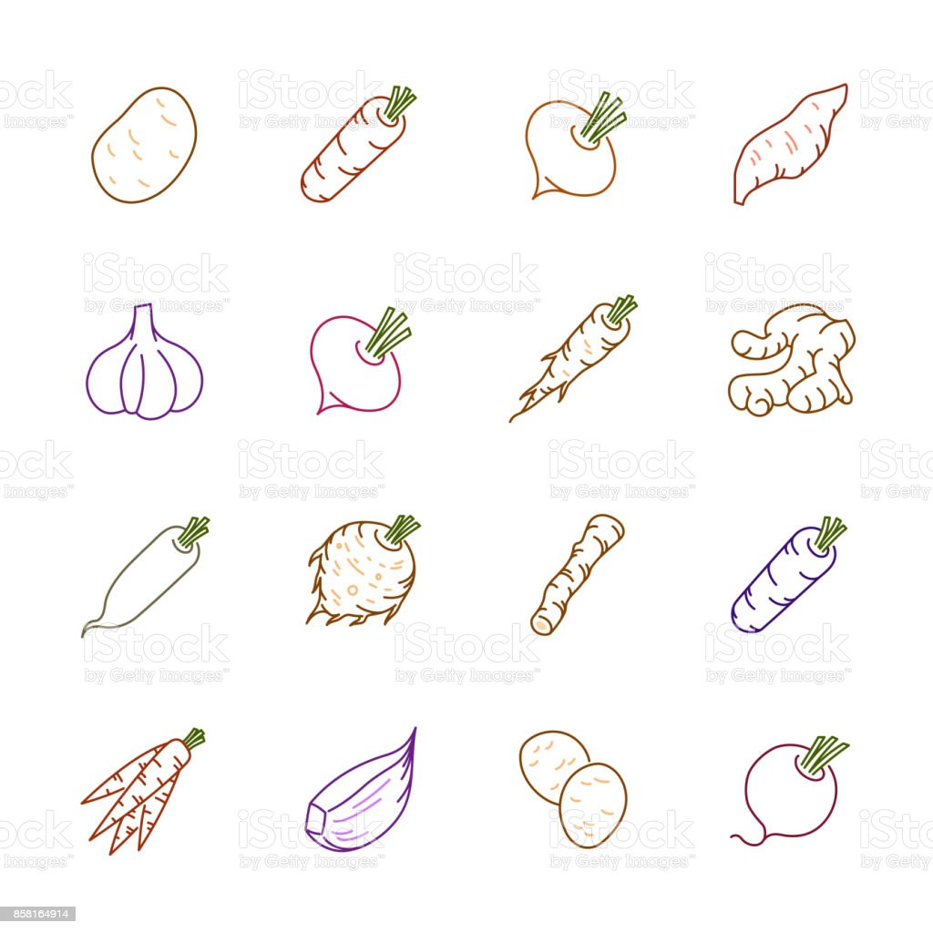 Vegetables icons - Potato, carrot and garlic vector art illustration