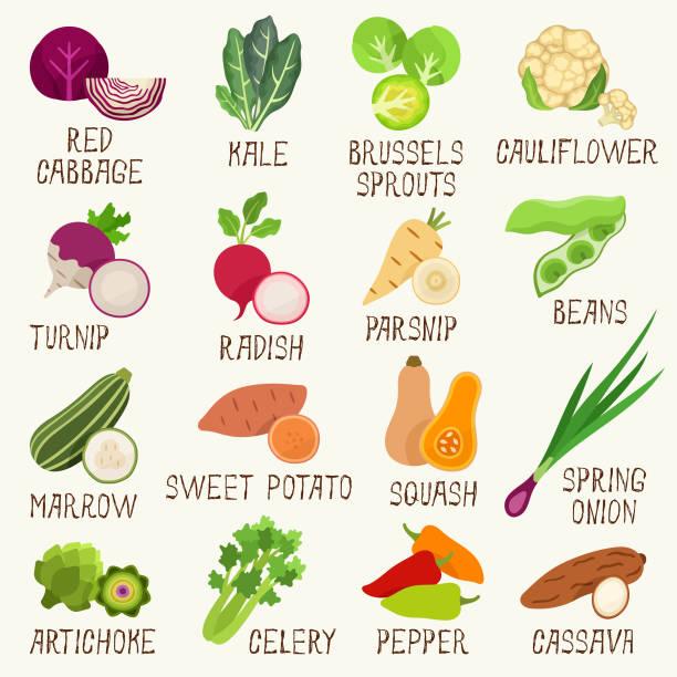 ikony warzyw - słodki ziemniak stock illustrations
