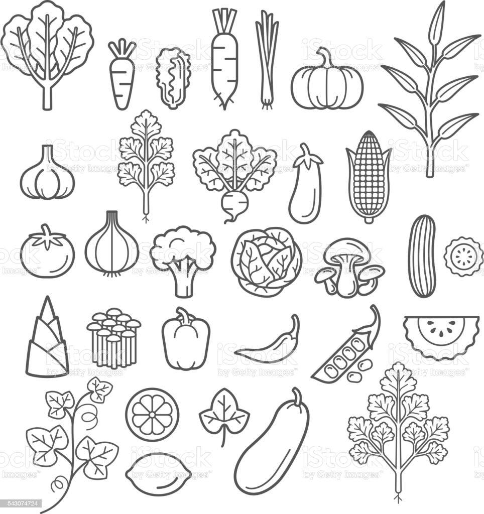 Vegetables icons. vector art illustration