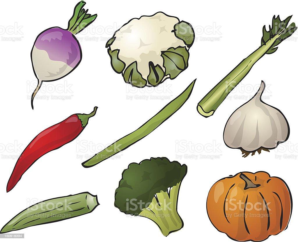 Vegetables illustration royalty-free vegetables illustration stock vector art & more images of broccoli