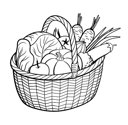 Vegetables in basket. Outline black and white vector illustration