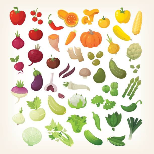 Vegetables in rainbow layout Set of common vegetables organized in rainbow layout. artichoke stock illustrations