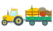 Tractor carrying pumpkin, tomato and potato in trailer. Yellow agricultural vehicle with vegetables, harvesting and farming, vegetarian food, rustic vector. Flat cartoon
