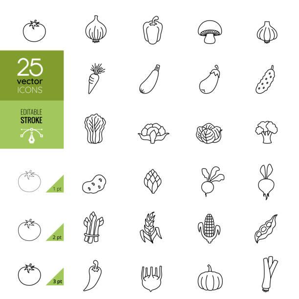 Vegetables Line Icons. Editable Stroke. Vegetables Line Icons. Editable Stroke. squash vegetable stock illustrations