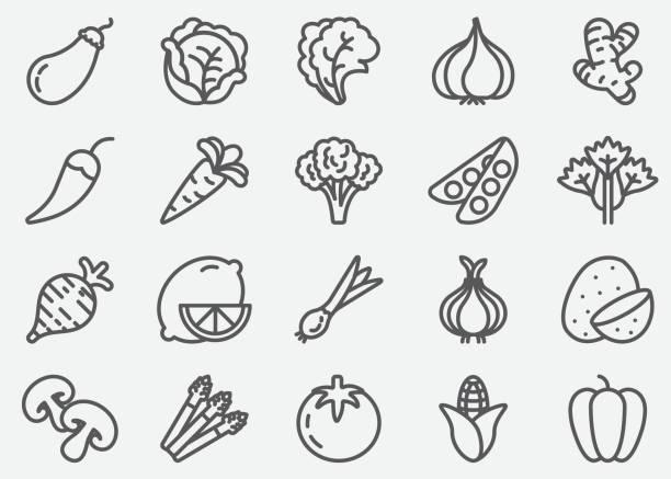 Vegetables Line Icons Vegetables Line Icons garlic stock illustrations