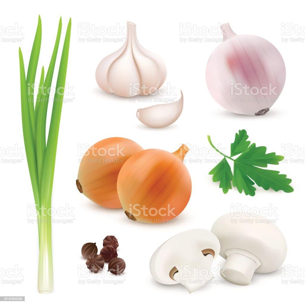 Composição realista de legumes em fundo branco com cebola, alho, cogumelos, salsa. Imagem vetorial - ilustração de arte em vetor