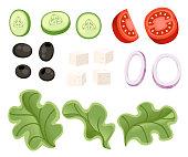 Vegetables salad recipe. Greek salad ingredient. Fresh vegetables cartoon icon design food. Flat vector illustration isolated on white background.